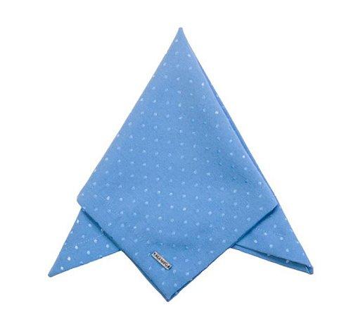 Guardanapo Liso Azul Poá BB