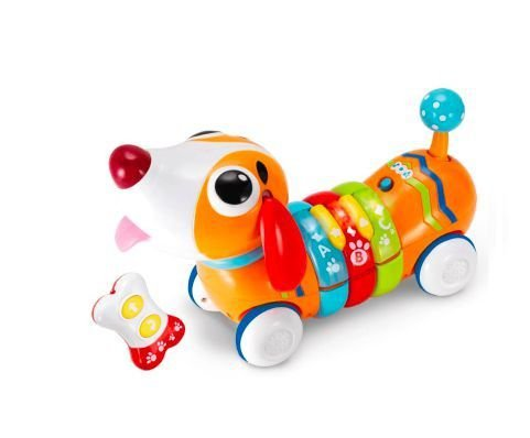 Cachorrinho Rainbow Pup - Win Fun