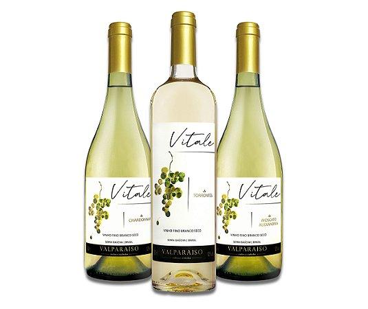 Kit Vinhos Brancos 3 un