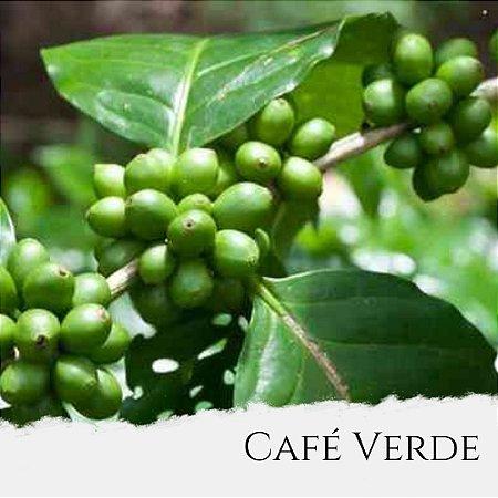 Óleo de Café Verde