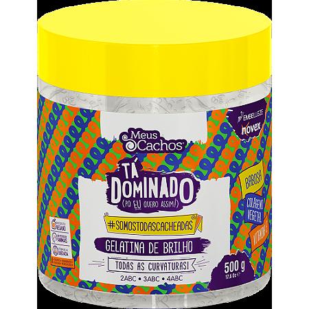 GEL MEUS CACHOS TÁ DOMINADO DE BRILHO 500G