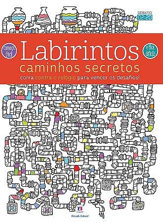 Passatempos Labirintos Caminhos secretos