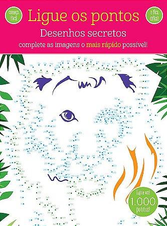 Passatempos Labirintos Desenhos Secretos
