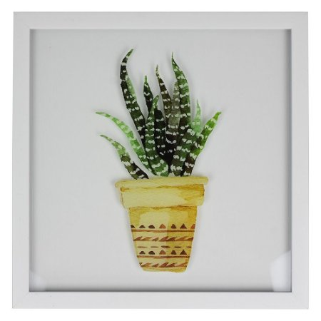 Quadro Branco Planta