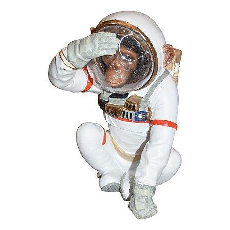 Macaco Astronauta Cego