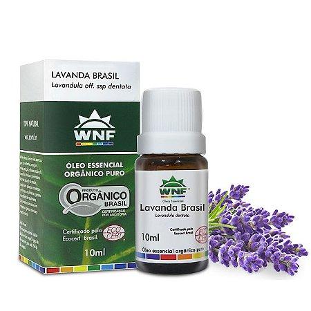 Óleo Essencial de Lavanda Brasil 10 ml