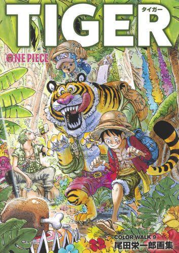 Artbook ONE PIECE Eiichiro Oda Illustration COLOR WALK 9 (Encomenda)