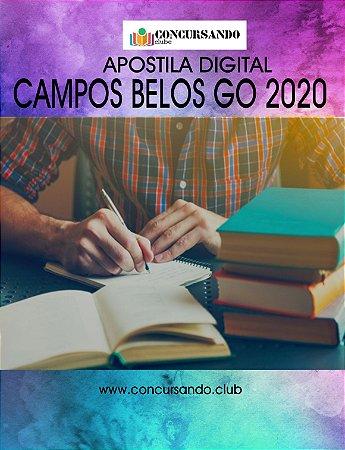 APOSTILA PREFEITURA DE CAMPOS BELOS GO 2020 PROFESSOR PEDAGOGO