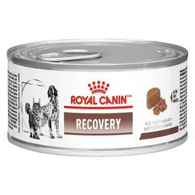Lata Royal Canin Veterinary Diet Cão E Gato Recovery 195g