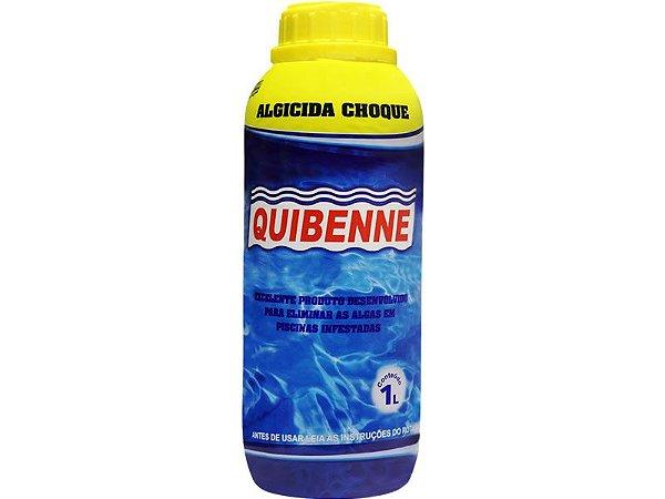 Quibenne algicida choque 1L