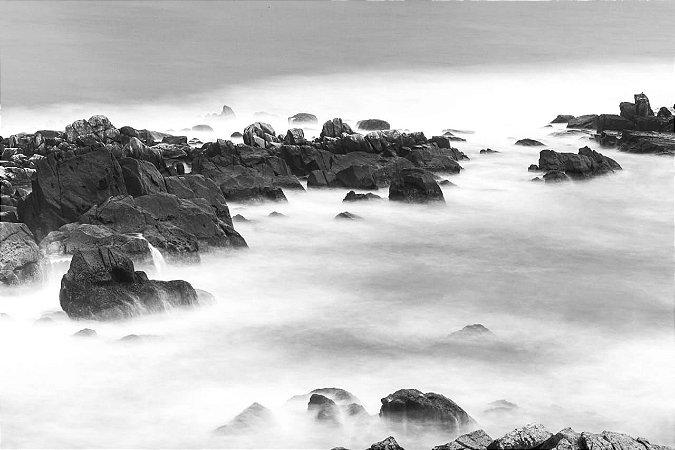 foto 85 - Felipe Aguillar - Praia da Armação