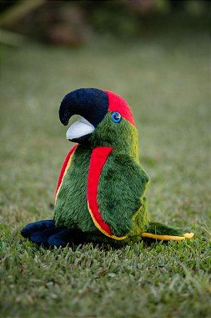 Pelúcia Papagaio Charão