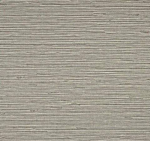 Papel de Parede Colours CP9066 - 0,53cm X 10m