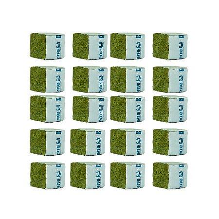 CULTILENE STONE WOOL CUBE - Kit com 20