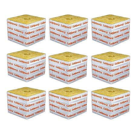 CULTILENE STONE WOOL GROWING BLOCK 10x10x9,8cm - Kit com 9