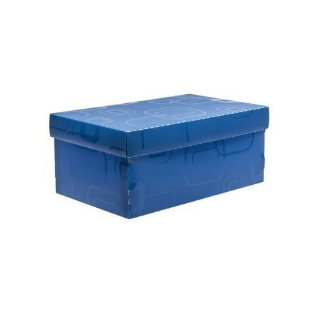 Caixa Organizadora Mini/sapato Dello 2169