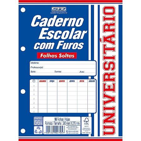 CADERNO ESCOLAR C/ FUROS 1M 96 FLS UNIVERSITÁRIO SÃO DOMINGOS