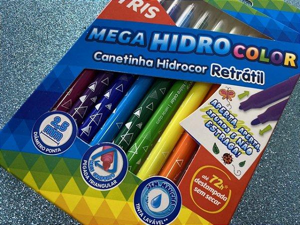 Caneta Hidrocor Retrátil - Kit com 12 cores