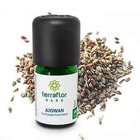 oleo-essencial-ajowan-5ml - Terra Flor