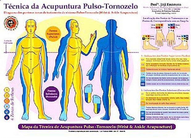 MAPA DA TÈCNICA DA ACUPUNTURA PULSO-TORNOZELO