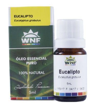 Óleo Essencial Eucalipto 5mL - WNF