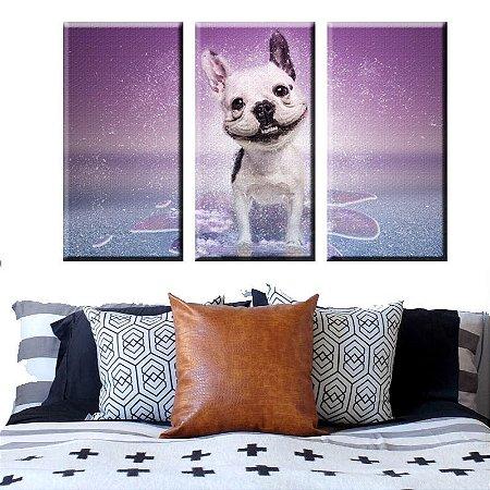 Quadro Cachorro Cão Feliz  3 Tela Decorativa