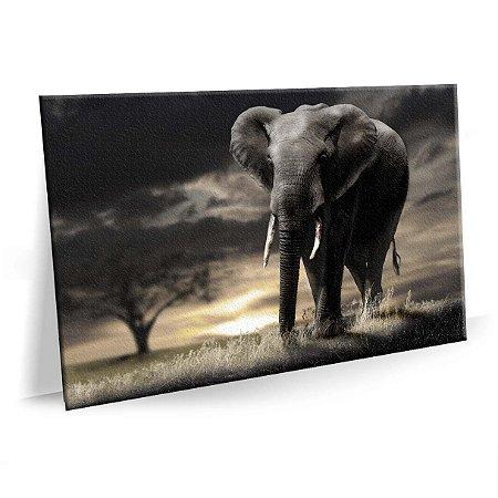 Quadro Elefante Africano Moderno Tela Decorativa