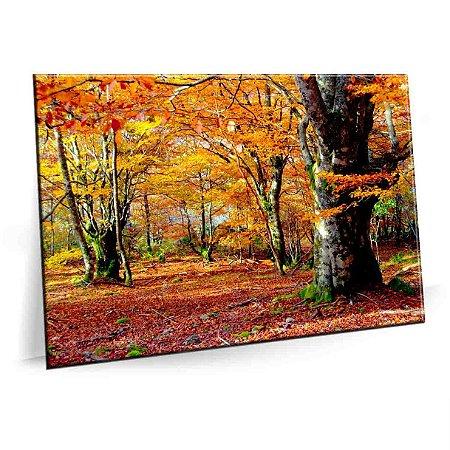 Quadro Floresta Clima Outono Tela Decorativa