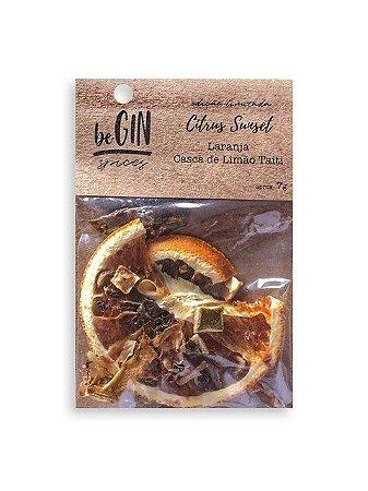 Sache Citrus Sunset - 7 gr Begin Spices - Preparo Gin Tônica