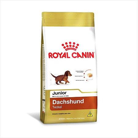 Royal Canin Mini para Cães Filhotes da Raça Dachshund 2,5KG
