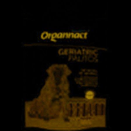 GERIATRIC PALITOS 160G
