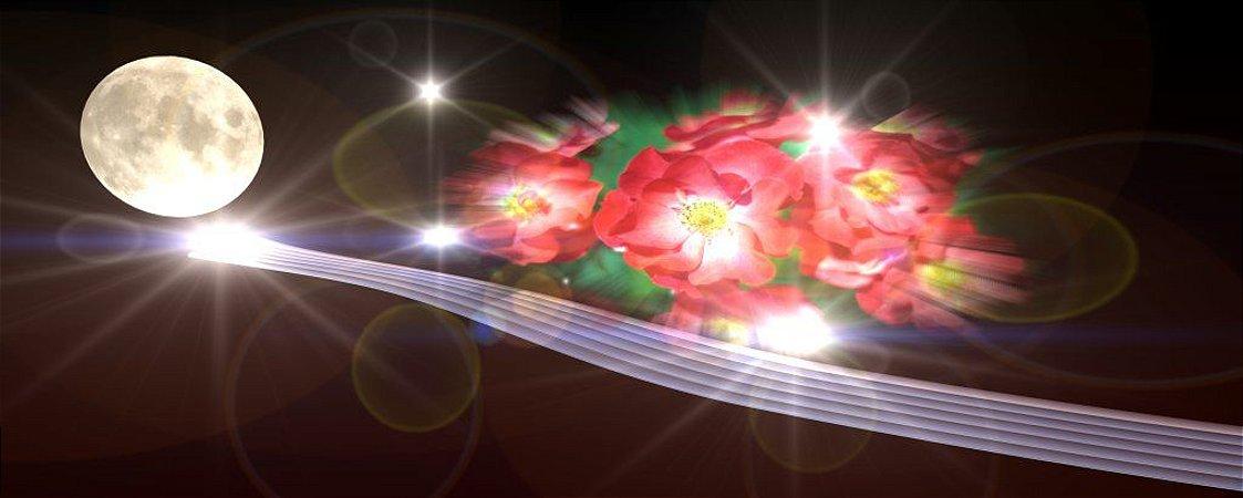 Painel Decorativo Caminho de Prata a Lua e as Flores
