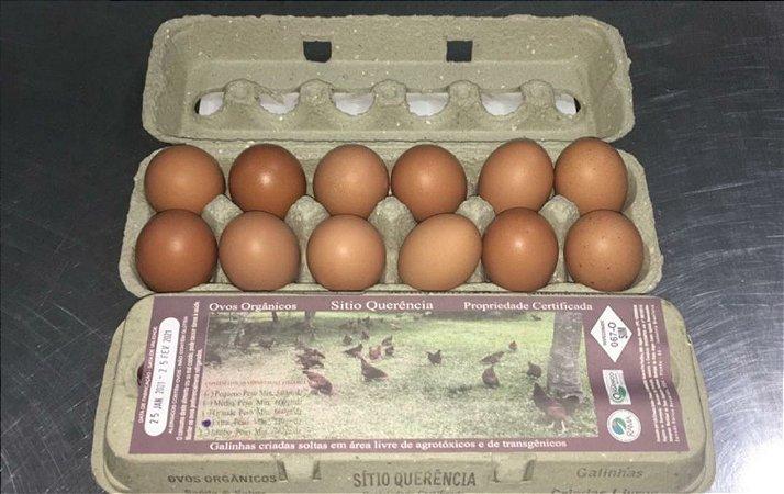 Ovos orgânicos - extra grande