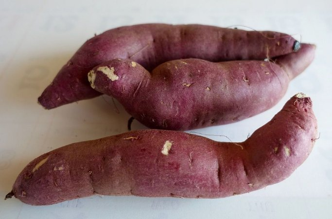 Batata doce rosa - 500g