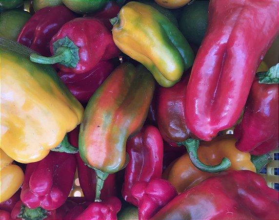 Pimentões coloridos 500g