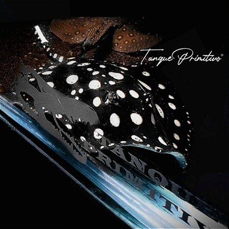 Peixe Arraia Leopoldi (Potamotrygon leopoldi) - TAMANHO: 20cm