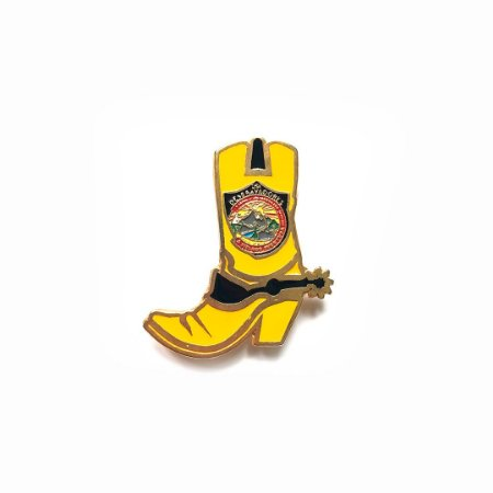 Pin, DSA2019, Bota, amarela, Desbravadores