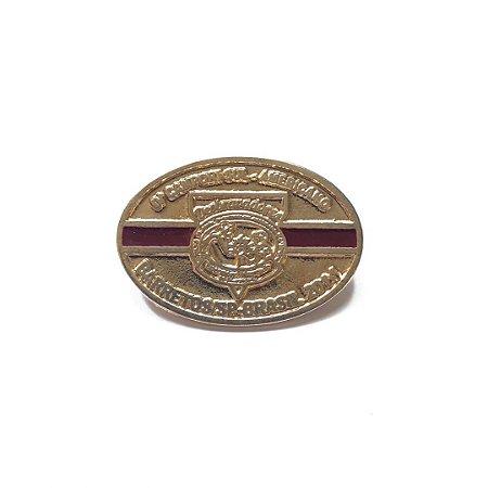 Pin, DSA 2014, Cores das classes, Excursionista