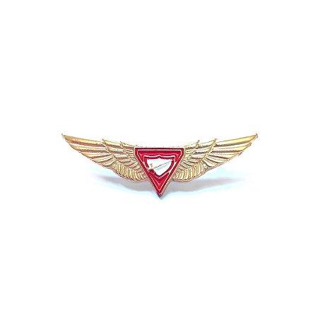 Pin, Logo D3, com asas