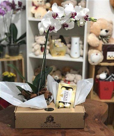 Orquídea com chocolates