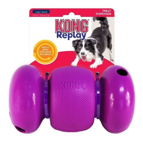 Kong Replay