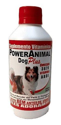 POWER ANIMAL DOG - RAÇAS MÉDIAS