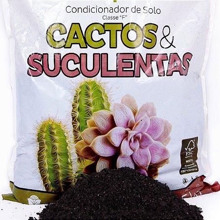 Substrato Especial Pronto Uso Para Cactos e Suculentas Vitaplan 1,5 kg