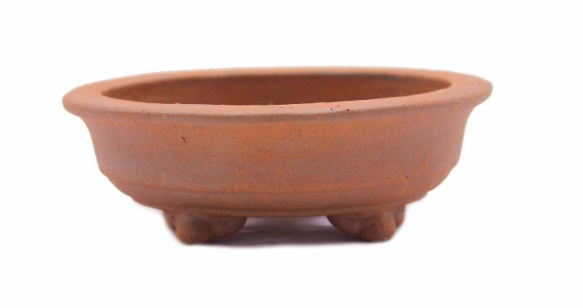 Vaso Redondo Para Bonsai Mame Terracota Jorge Ribas 10,5 X 4 cm