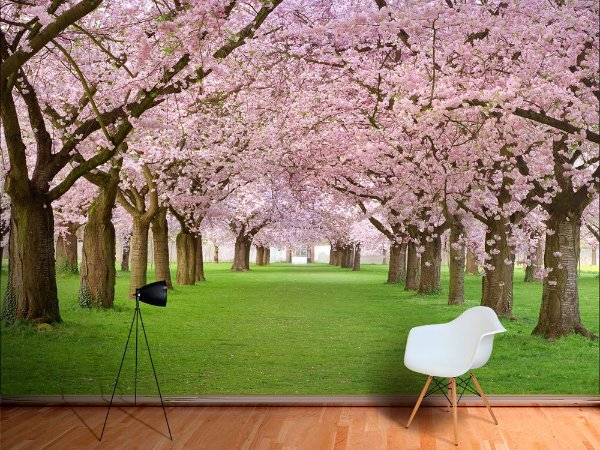 Papel de Parede Fotográfico - Plenitude de cerejeiras- PA099