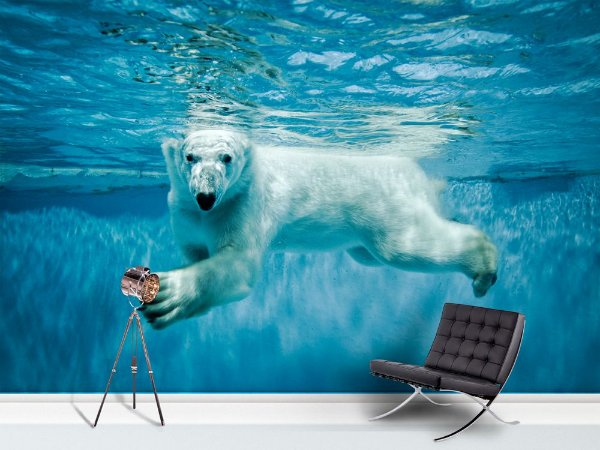Papel de Parede Fotográfico - Urso polar- PA100