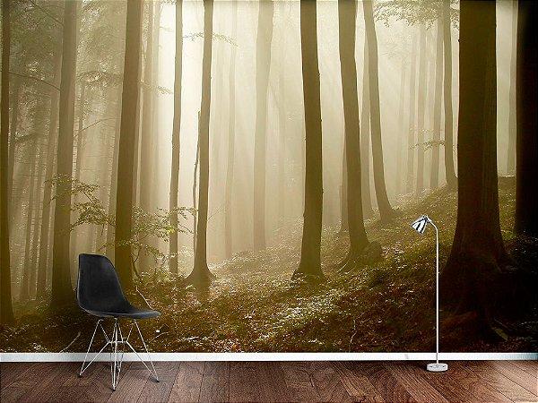 Papel de Parede Fotográfico - Raios solares na floresta- PA102