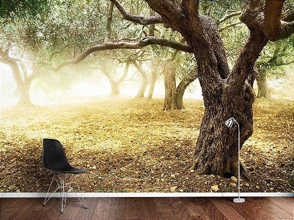 Papel de Parede Fotográfico - Amanhecer no bosque - PA105