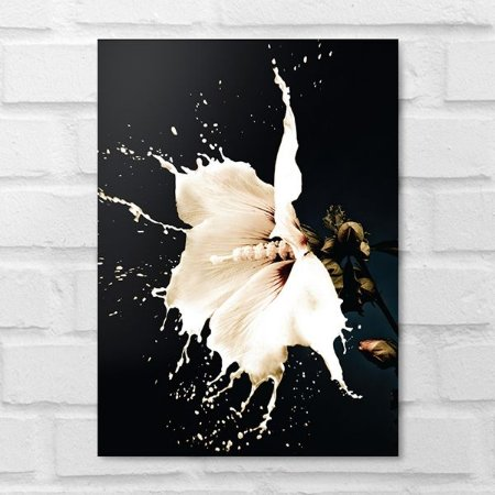 Placa Decorativa - Floral Splash White