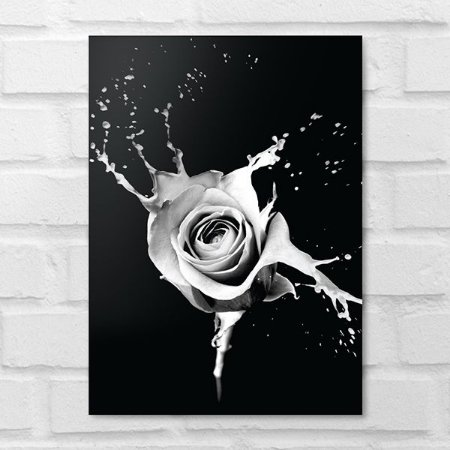 Placa Decorativa - Floral Splash Grey